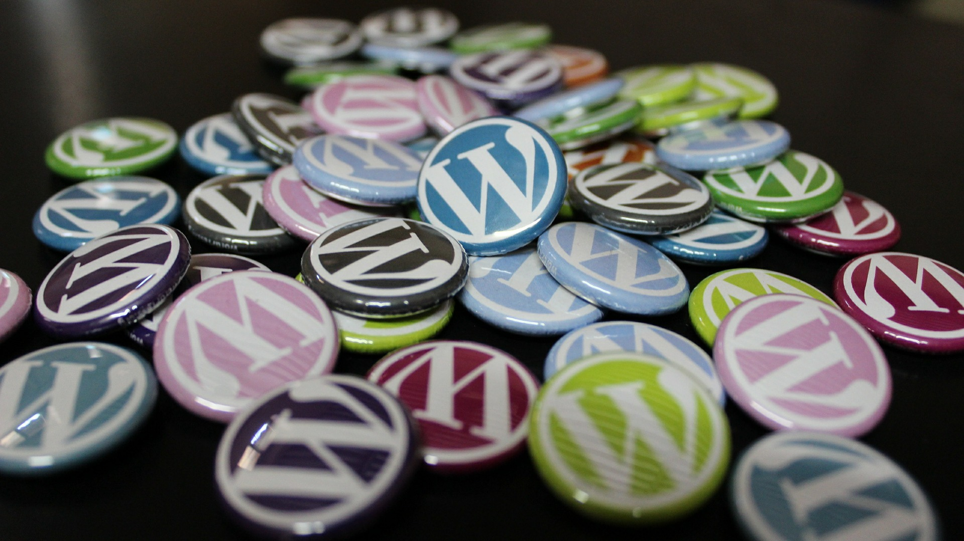 Learn How to Update Your WordPress