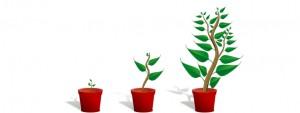 Personalpolitik in den wachsenden Unternehmen
